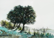 Ancient hedgerow - sold watercolour
