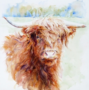 Highland Herd - (56cms/22inches square) taken from studies of a juvenile in a Wiltshire herd