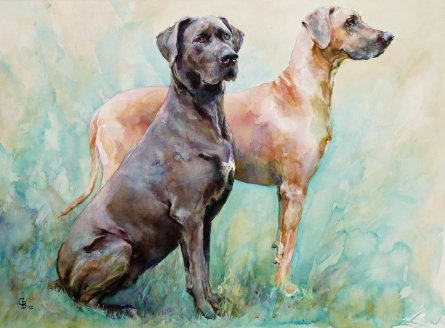 Noble pair - (76 x 56cms/30 x 22inches)